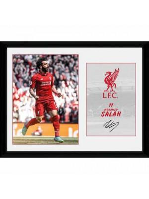 Liverpool FC Picture Salah 16 x 12