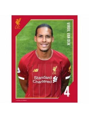 Liverpool FC Headshot Photo Van Dijk