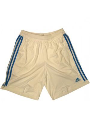 UEFA Champions League training shorts