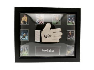 England FA Shilton Signed Glove (Framed)