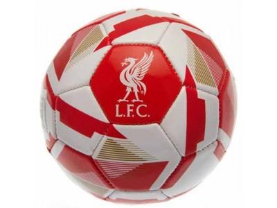 Liverpool FC Skill Ball RX