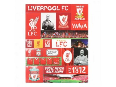 Liverpool FC Fridge Magnet Set