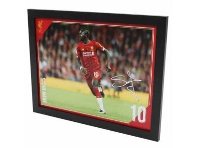 Liverpool FC Picture Mane 16 x 12