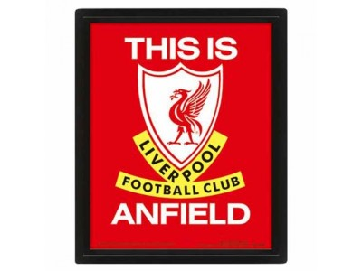 Liverpool FC Framed 3D Picture