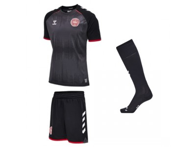 Denmark goalie kit 2020/22- youth