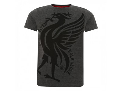 Liverpool Boys Charcoal Liverbird Ynwa Tee