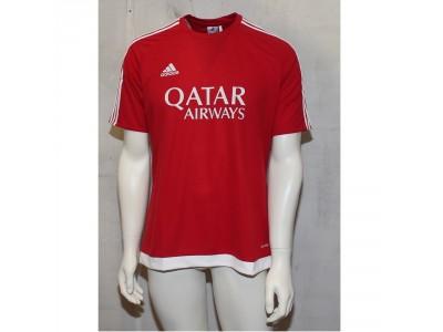 Estro teamsport jersey - Qatar Airways