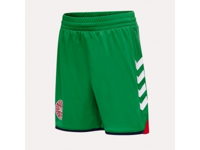 Denmark goalie shorts 2020/22 - green - youth - by Hummel