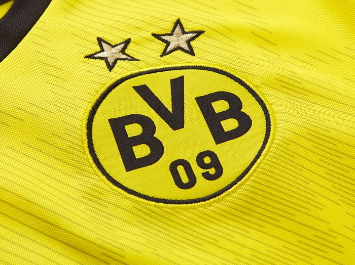Dortmund home kit 13/14 logo