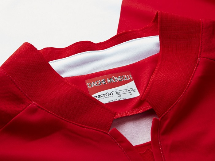 AS Monaco home kit collar