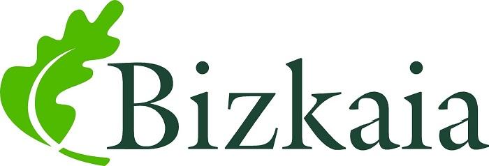Bizkaia province logo