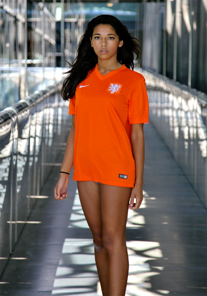 Holland home jersey 2014 full figure